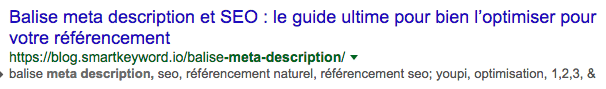 balise-meta-descripción-natural-seo