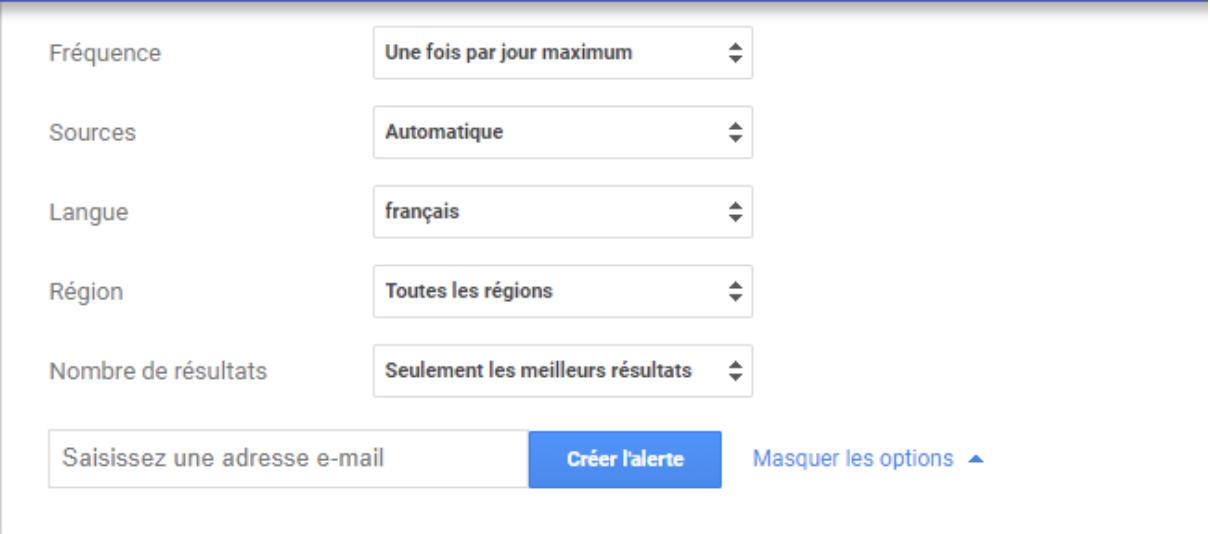 Google-alerts-langue