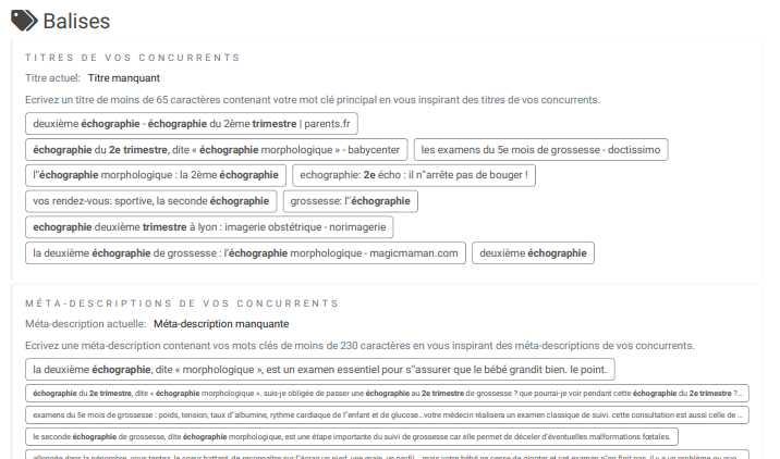 SmartKeyword-page-balises-principales