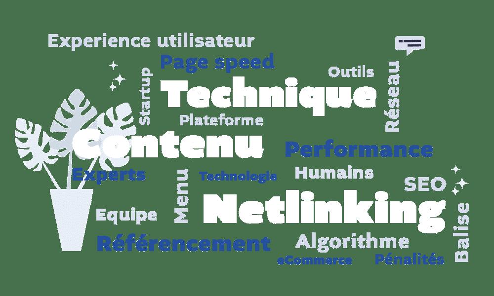 nuage-de-mots-technique-netlinking-contenu